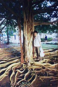 117.ホテル内の木.jpg