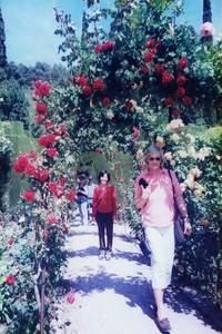 142.下の庭園の花々.jpg