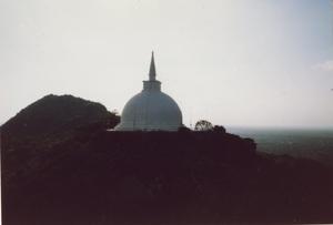 177.インビテーションロックよりマハーサーヤ大塔を望む1.jpg