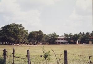 184.小学校(アヌラーダプラ).jpg