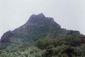 203.ロツイ山.jpg