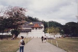 23.仏歯寺1.jpg