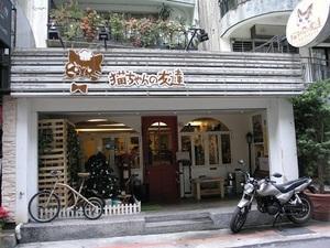 273.猫カフェ猫ちゃんの友達.jpg