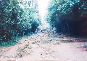 354.徒歩で登るコース(プノンバケン).jpg