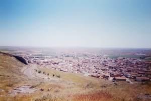 379.丘の上からコンスエグラの街を望む.jpg