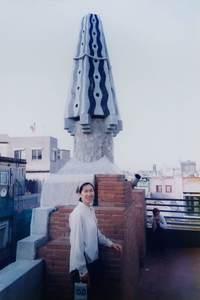68.グアル邸屋上の煙突.jpg