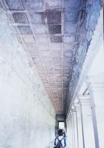 82.第一回廊南面 花状紋の天井.jpg