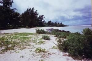 83.チュルビーチ.jpg