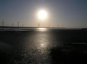 85.湿地の風車1.jpg